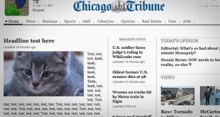 chicago-tribune-kitten-website-glitch-scott-kleinberg